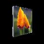 Светодиодный экран для видеостены Dahua PHSA1.6-SS