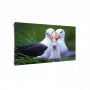 Светодиодный экран для видеостены Dahua PHSA1.9-EH