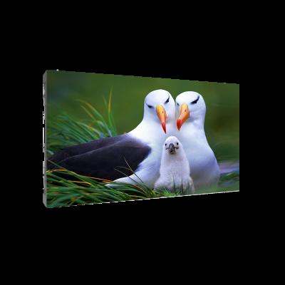 Светодиодный экран для видеостены Dahua PHSA1.9-SH